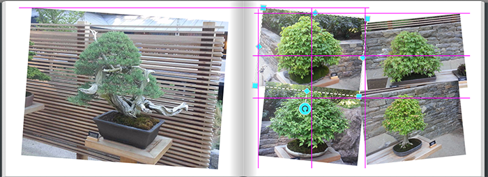 PhotoAlignment-of-rotated-photos-and-across-book-pages.png