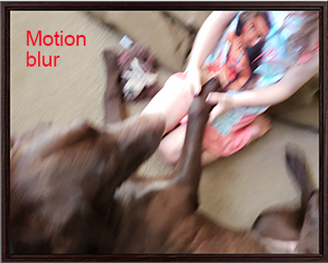 Motion blur on canvas