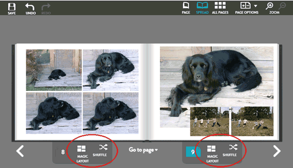 The Magic Layout and Shuffle links for rearranging photos on book pages